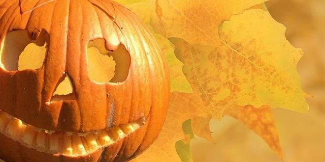 Será que quer ter uma abobora Halloween?