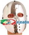 Máscara Hóquei Prata 23Cm , Loja de Fatos Carnaval, Disfarces, Artigos para Festas, Acessórios de Carnaval, Mascaras, Perucas, Chapeus 842 acasadocarnaval.pt